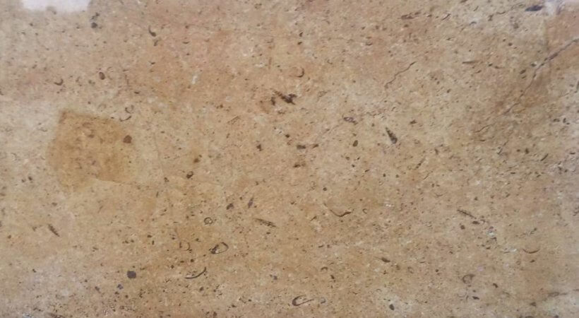 Paradise Gold Marble